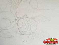 简单唯美的水彩画教程步骤图片,石榴水彩画
